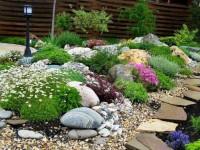 Альпийская горка своими руками (170 фото) — разновидности растений, варианты оформления, выбор места для сооружения