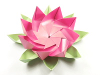 Оригами цветок (120 фото): мастер-класс поэтапно, схемы и шаблоны для начинающих + варианты простых и сложных поделок