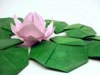 Оригами из бумаги (140 фото): особенности техники, пошаговая инструкция, схемы для начинающих + примеры лучших работ