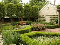 Озеленение участка своими руками (100 фото) — разновидности озеленения, варианты оформления, растения для посадки