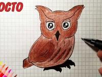 Как нарисовать сову карандашом поэтапно: легкий мастер-класс для детей, схемы, фото, инструкция